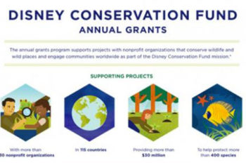 Disney Conservation Fund Supports Wildlife Around the World with Annual Grants; Surpasses $30 Million Giving Milestone