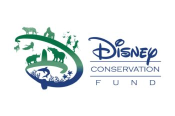 Disney Conservation Fund Announces 2018 Conservation Grants