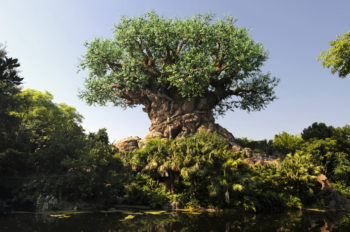Disney Expands Environmental Commitment By Reducing Plastic Waste