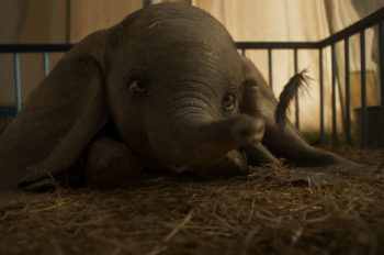 New Trailer Debuts for Live-Action 'Dumbo'