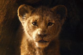 Teaser Trailer Debuts for Disney's 'The Lion King'