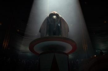 Disney Debuts a New Sneak Peek at 'Dumbo'