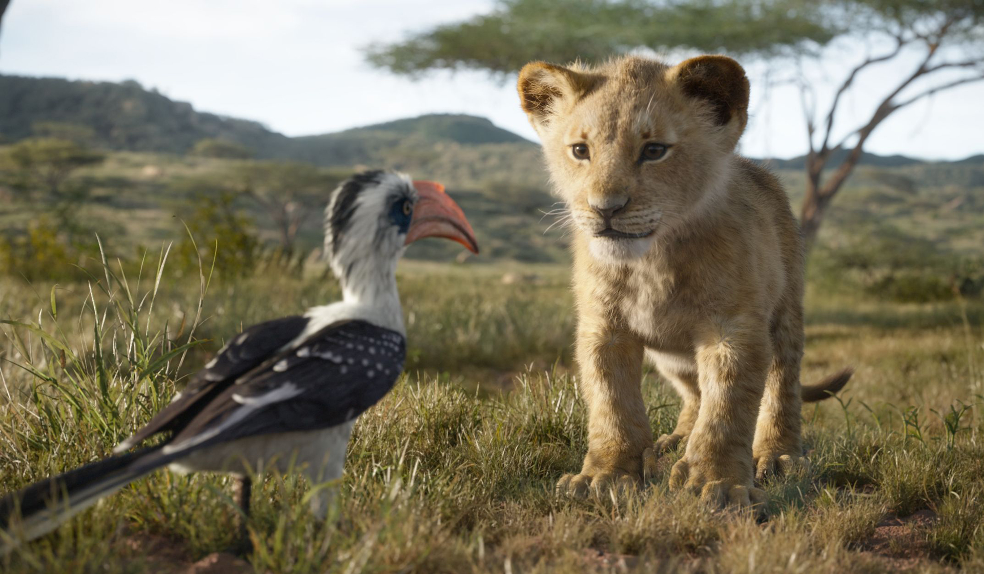 'The Lion King' Gets Off to a Roaring Start - The Walt Disney Company