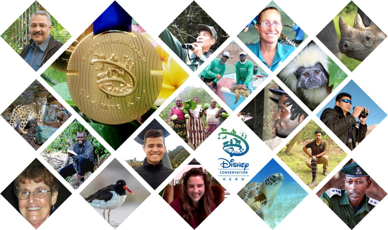 Disney anuncia os vencedores do Disney Conservation Hero Award 2020