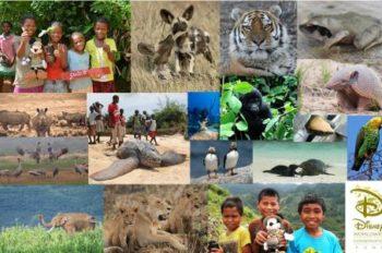 Disney Worldwide Conservation Fund Announces 2014 Grant Recipients and Surpasses $25 Million Giving Milestone