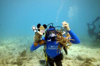 Disney Worldwide Conservation Fund Names 2014 Conservation Heroes