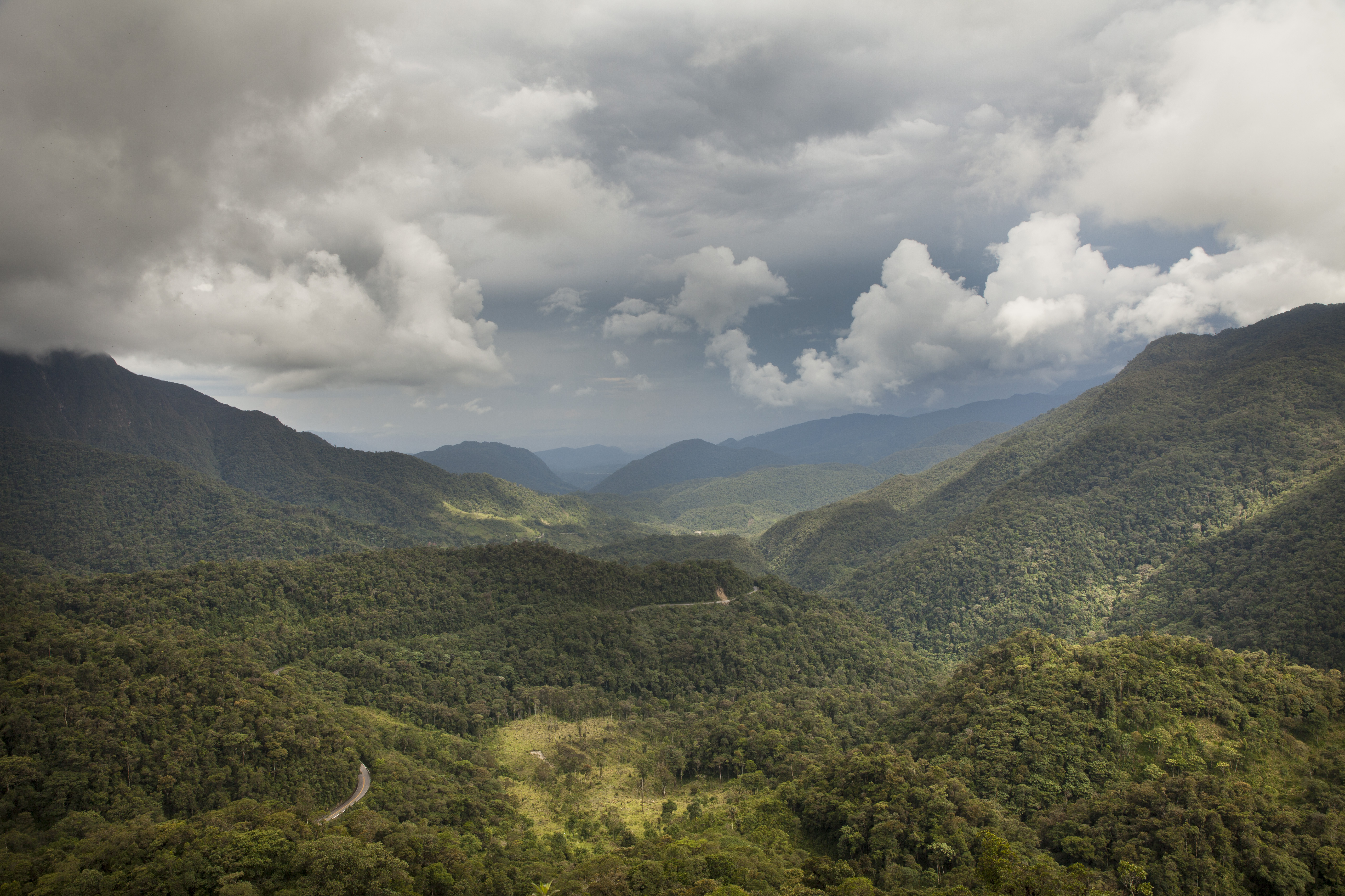 Disney Brings Conservation Efforts in Peru to U.S. Parks and Resorts